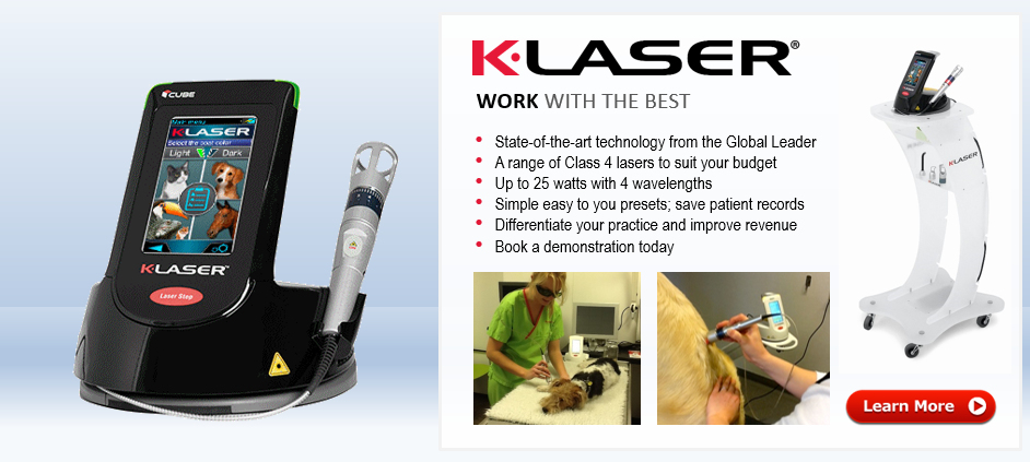K-Laser Class 4 Therapy Laser